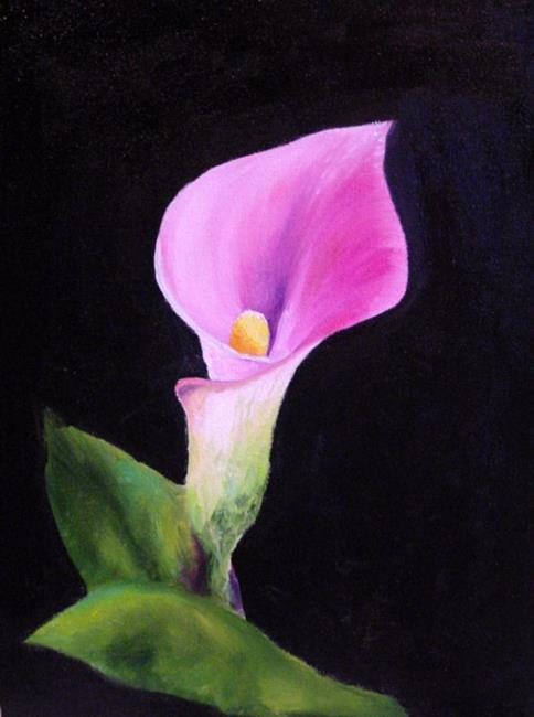 Art: Pink Calla Lily by Artist Laurie Justus Pace