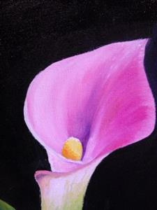 Detail Image for art Pink Calla Lily