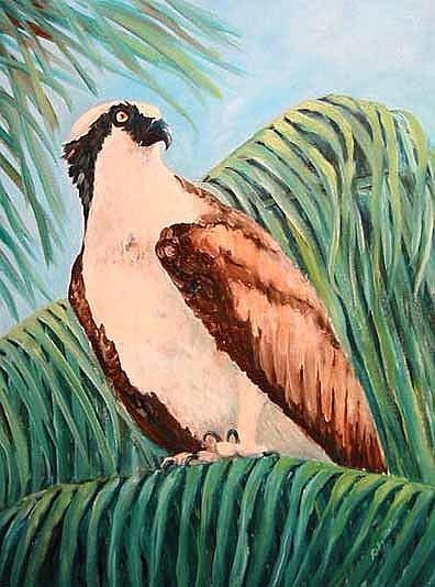 Art: Osprey by Artist Ulrike 'Ricky' Martin
