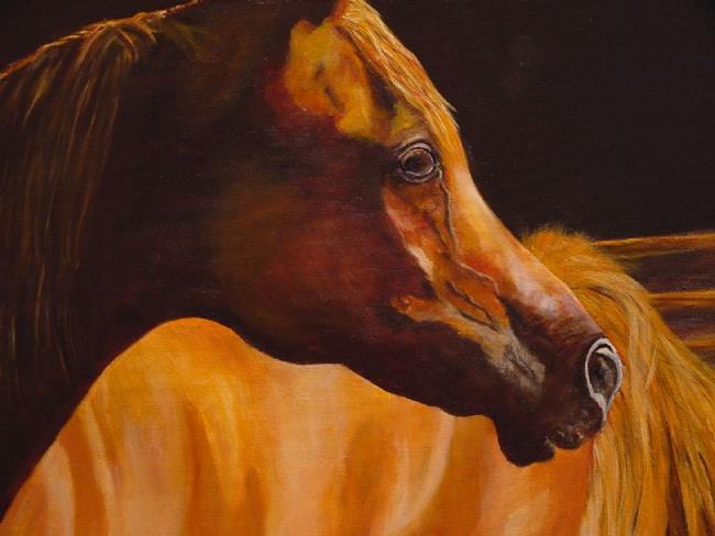Art: Arabian Horse Barn Babe by Artist Mary Jo Zorad