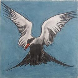 Art: Tern by Artist Paul Helm