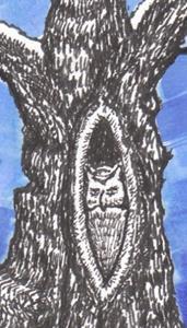 Detail Image for art Full Moon Owl