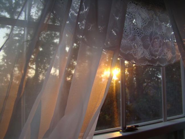 Art: Morning's Light by Artist Leea Baltes
