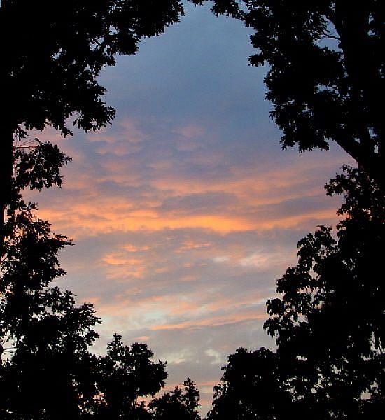 Art: Evening Sky by Artist Leea Baltes
