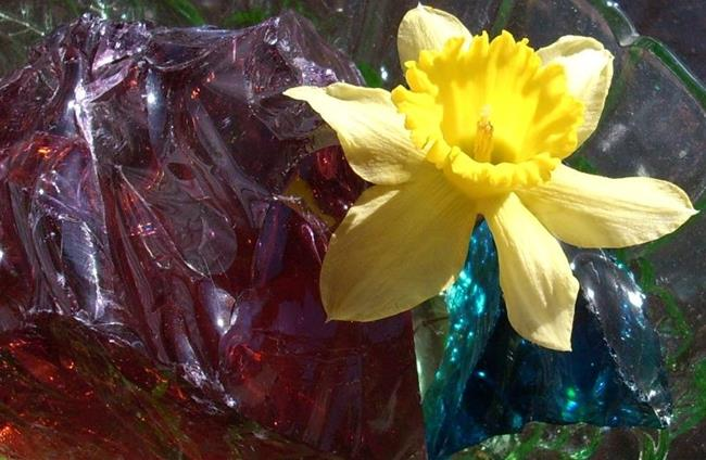 Art: GLASS AND DAFFODIL by Artist Sherry Key