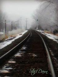 Art: Snow Tracks in Kansas by Artist Staci Dawn
