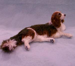 Detail Image for art Silk Furred Tri Color English Springer Spaniel