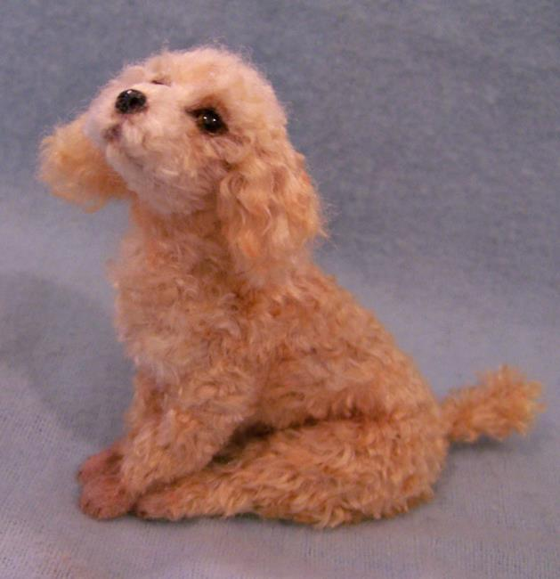 Art: Silk Furred Apricot Poodle by Artist Camille Meeker Turner