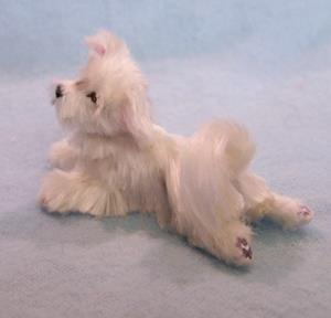 Detail Image for art Silk Furred Maltese Dog