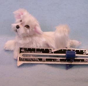 Detail Image for art Silk Furred Maltese Dog
