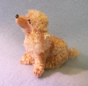 Detail Image for art Silk Furred Apricot Poodle