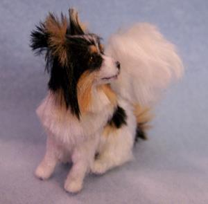 Detail Image for art Silk Furred Papillon Dog