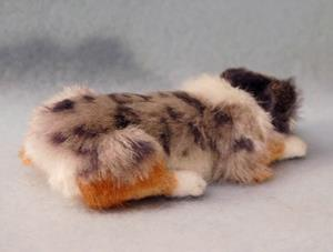 Detail Image for art Silk Furred Blue Merle Aussie