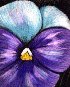 Detail Image for art Cat Behind the Pansy Flower /EBSQ Award Winner