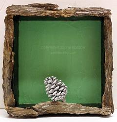 Art: White Pine Cone by Artist Windi Rosson