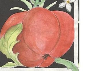 Detail Image for art anatomy of the tomato (sold)