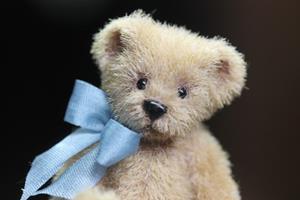 Detail Image for art Teddy