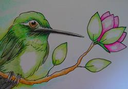 Art: GREEN HUMMINGBIRD WATERCOLOR & INK by Artist Cyra R. Cancel