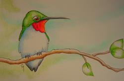 Art: RUBY HUMMINGBIRD WATERCOLOR OSWOA 4 X 6 by Artist Cyra R. Cancel
