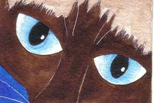 Art: SIAMESE ACEO  by Artist Dawn Barker