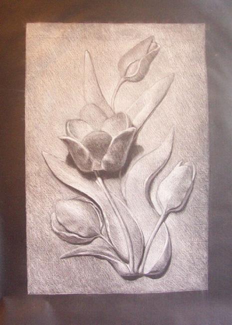 Art: TULIP CAST DRAWING by Artist Lauren Cole Abrams