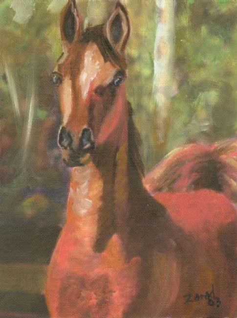 Art: Arabian Horse Stand Alert by Artist Mary Jo Zorad