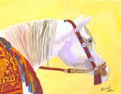Art: Decorated Arabian by Artist Mary Jo Zorad