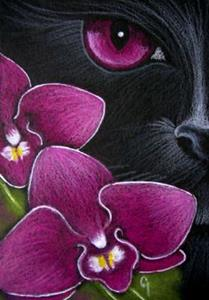 Detail Image for art BLACK CAT BEHIND THE MAGENTA DENDROBIUM ORCHID