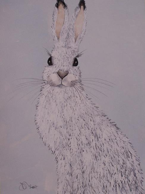 Art: ARTIC HARE h538 by Artist Dawn Barker