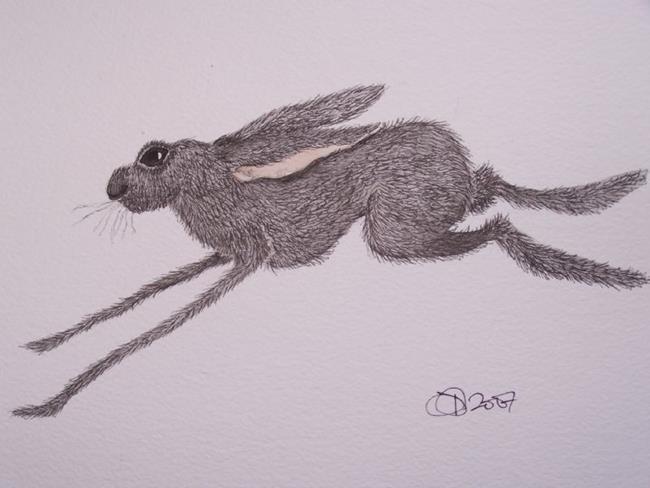 Art: HARE h544 by Artist Dawn Barker