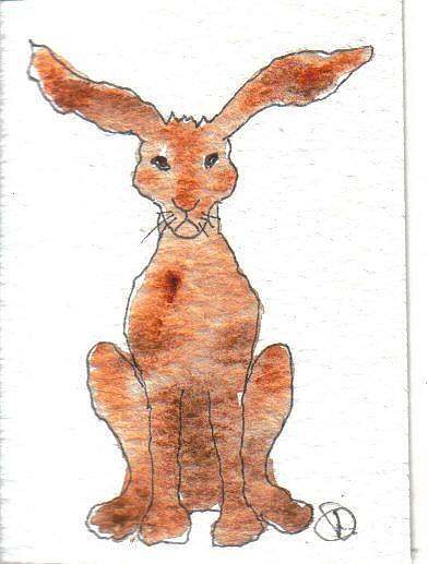 Art: ACEO HARE by Artist Dawn Barker