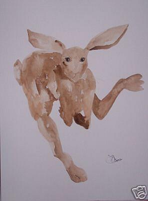 Art: HARE h495 by Artist Dawn Barker