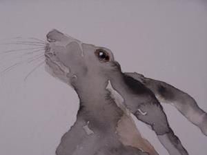 Detail Image for art HARE h515