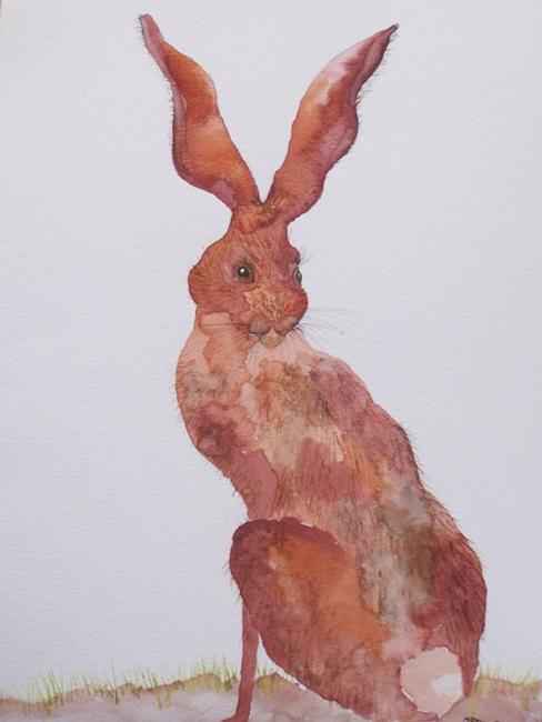 Art: HARE h525 by Artist Dawn Barker
