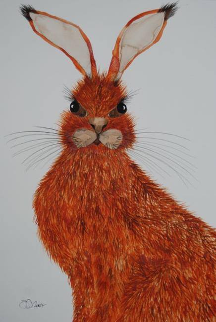 Art: HARE h534 by Artist Dawn Barker