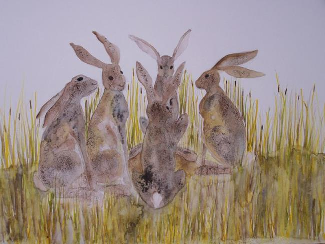 Art: HARES  h541 by Artist Dawn Barker