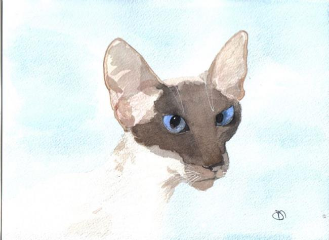 Art: SIAMESE CAT c125 by Artist Dawn Barker