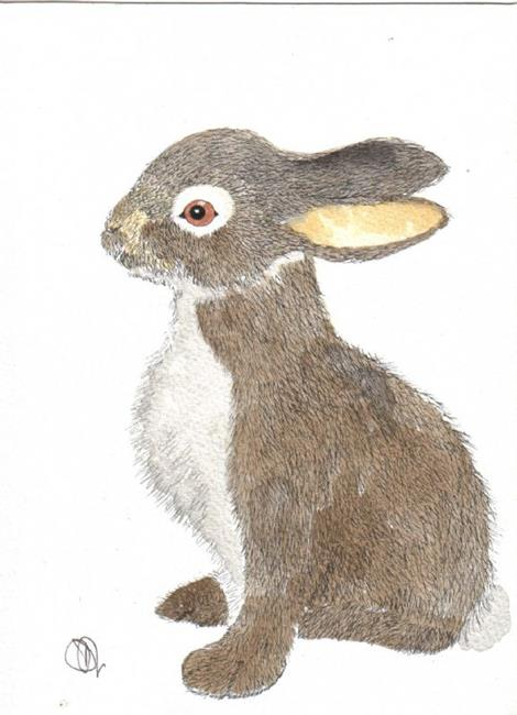 Art: HARE leveret by Artist Dawn Barker