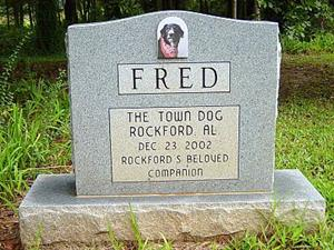 Detail Image for art Fred, town dog of Rockford Alabama