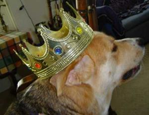 Detail Image for art ~charger~king of dogs~