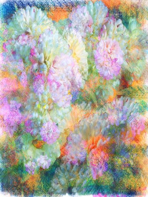 Art: Dusted Mums by Artist Carolyn Schiffhouer