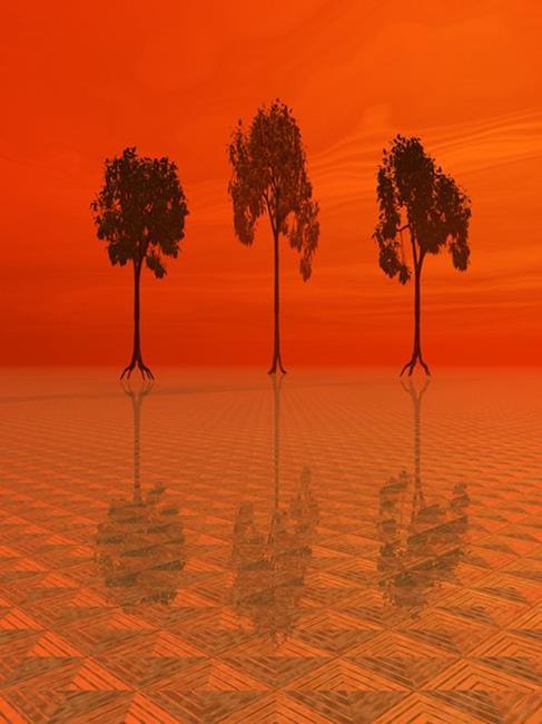 Art: Three Trees by Artist Carolyn Schiffhouer