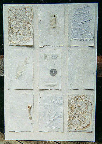 Art: white on white by Artist Tina Nixon