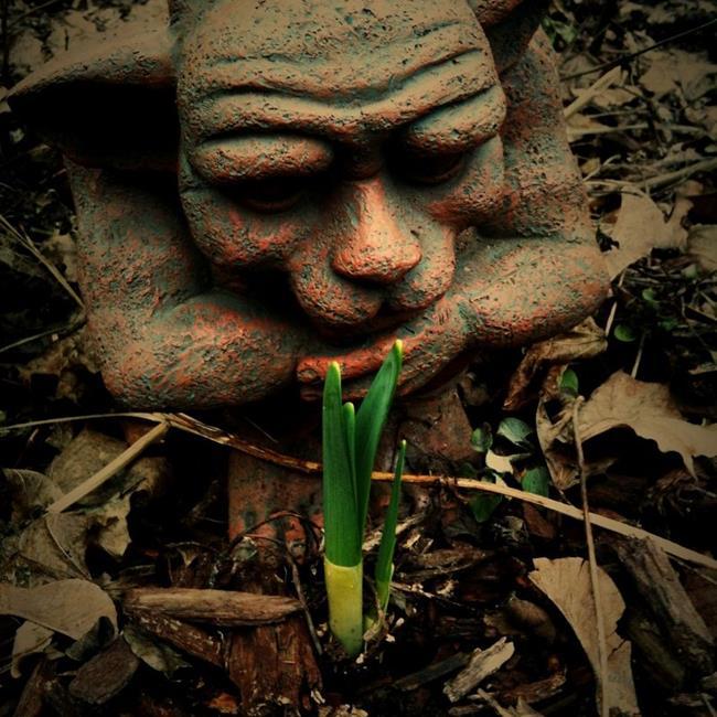 Art: Waiting for Daffodils by Artist Amie R Gillingham