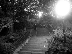 Art: The Stairs  by Artist Diane G. Casey