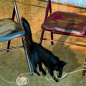 Detail Image for art Folding Chairs and a Cat