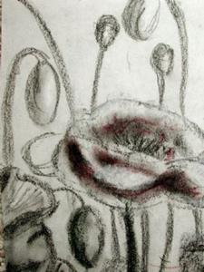 Detail Image for art unfinished poppies