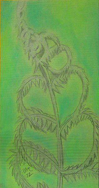 Art: Study of Fern by Artist Vic