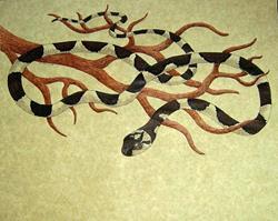 Art: Cheshire Snake by Artist Jackie K. Hixon