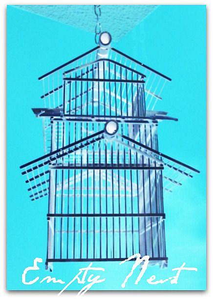 Art: Empty Nest by Artist April Trice